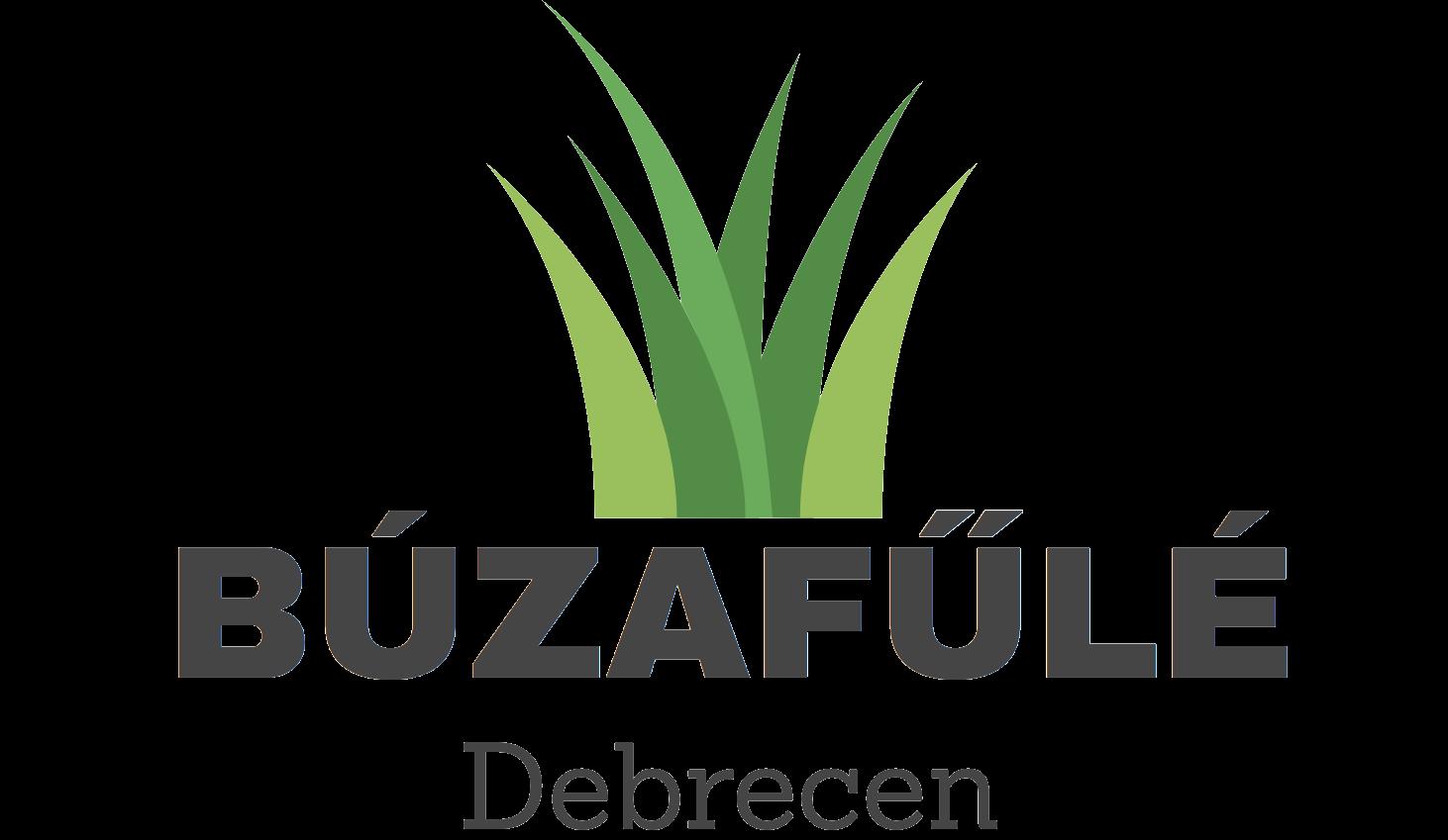 Búzafűlé Debrecen